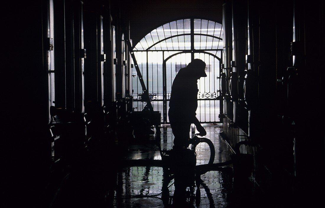 Steel tank cellar, worker operating pump, Mendoza, Argentina