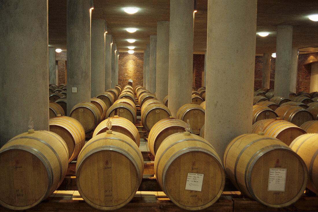 Barrique cellar, Dornier Wines, Stellenbosch, S. Africa