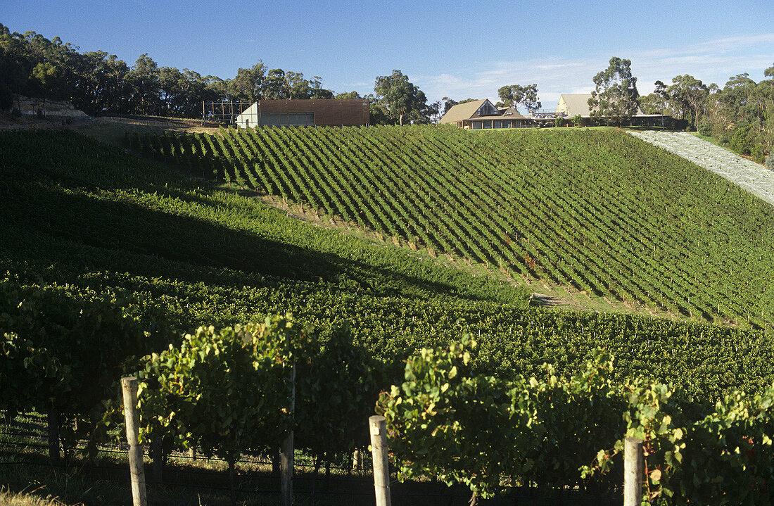 Coldstream Hills Winery, Yarra Valley, Victoria, NSW, Australia