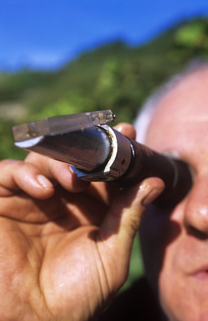 Wine-grower checking the ripeness of grapes with a refractometer