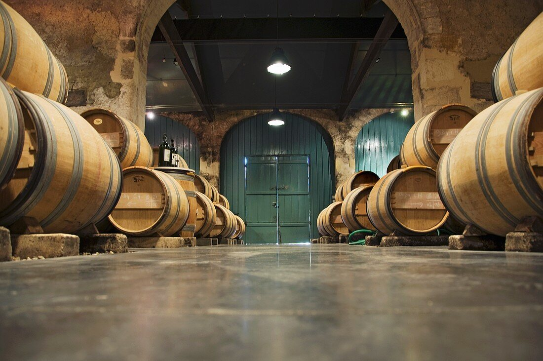 Barrique cellar, Château Kirwan, Margaux, France