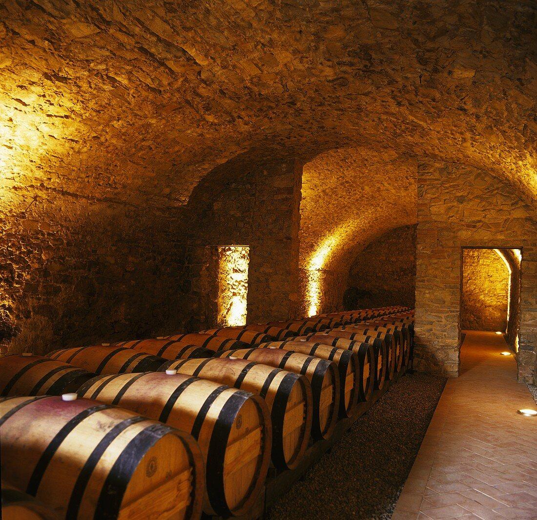 Weinkeller des Castello di Ama, Gaiole, Siena, Chianti, Toskana, Italien