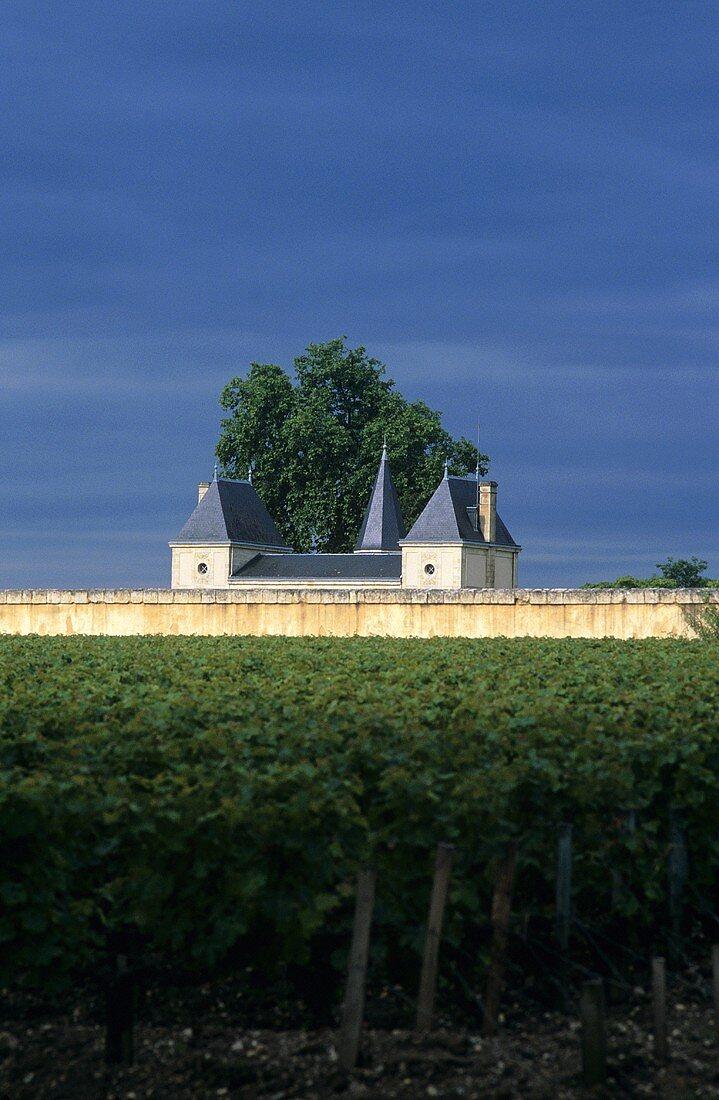 View of the famous Château Margaux, Médoc, Bordeaux, France