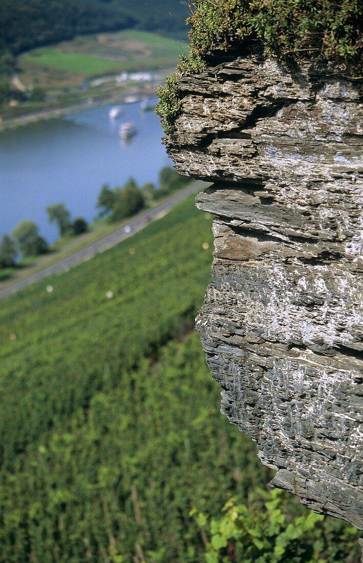 Weathered grey slate, 'Wehlener Sonnenuhr' Einzellage, Mosel, Germany