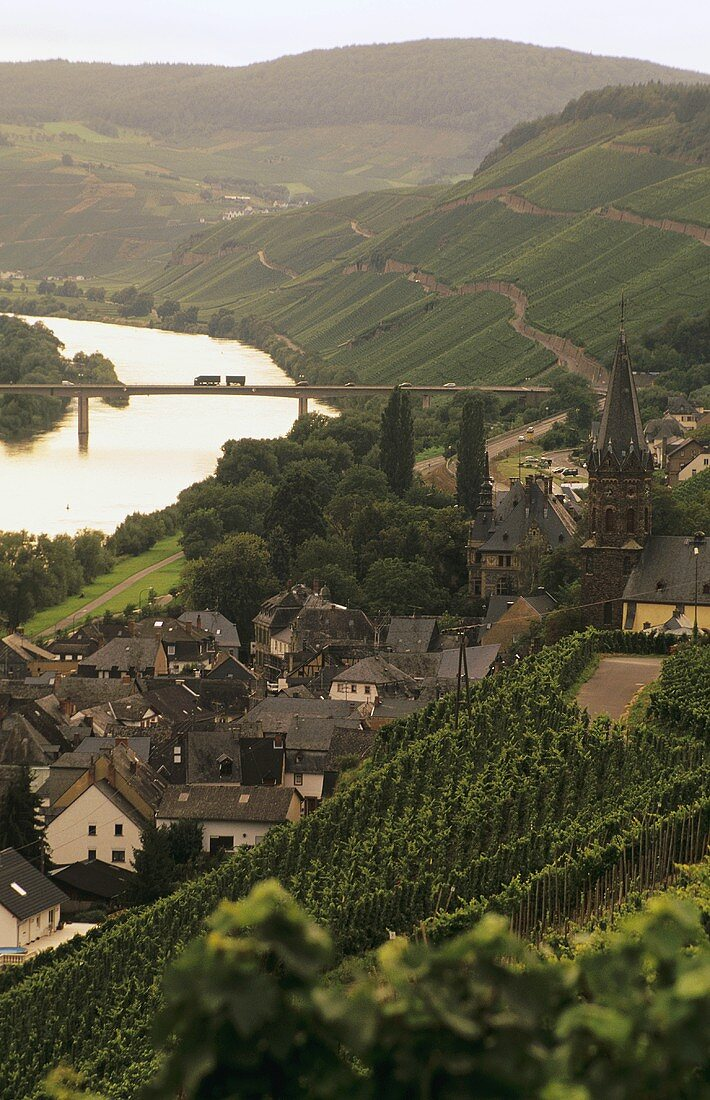 View from wine village of Lieser to Brauneberger Juffer, Mosel, Germany