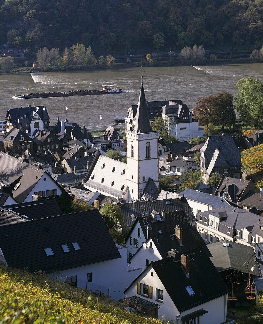 View of the wine town of Assmannshausen, Rheingau, Germany