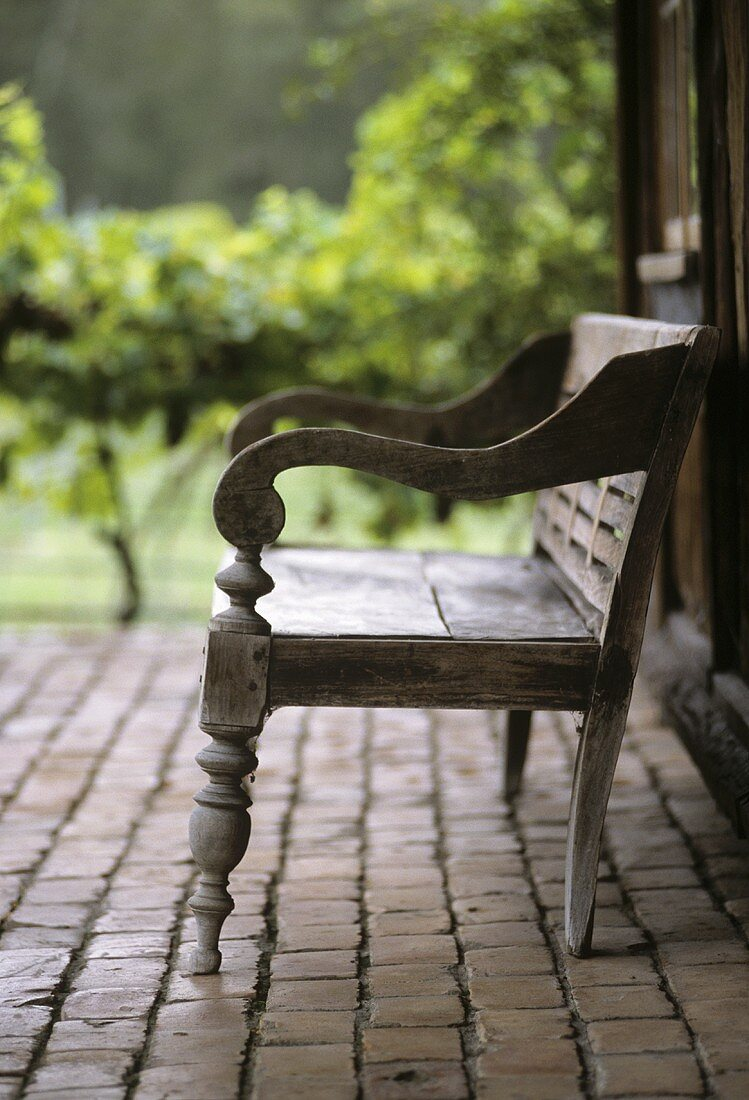 Wooden seat on a terrace, grapevines in background