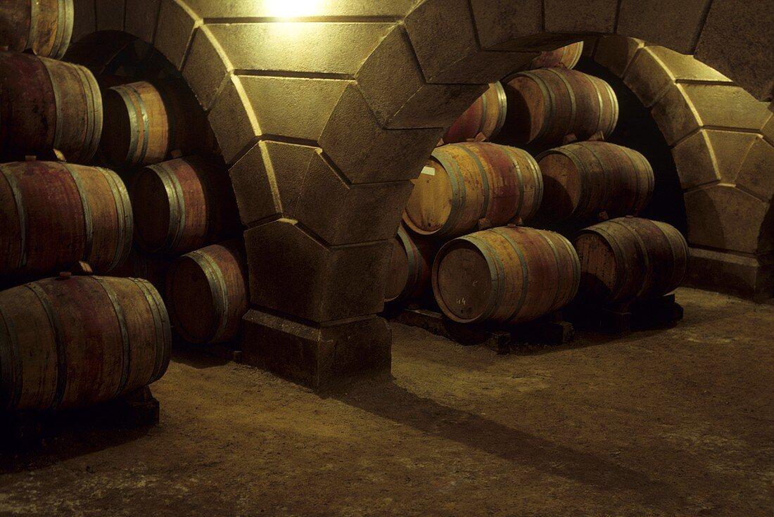 Alain Brumont wine cellar, Madiran, France