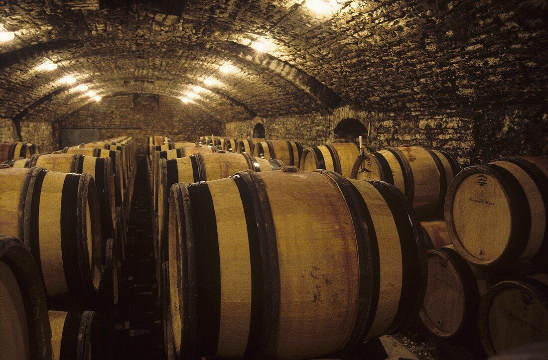 The fine barrique cellar of Romanee Conti, Burgundy