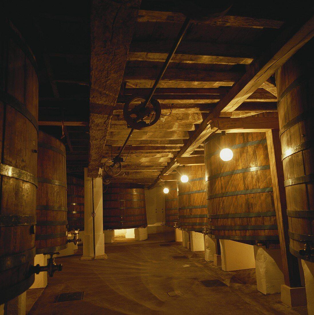 Wine cellar of Chateau Figeac, St. Emilion, Bordeaux