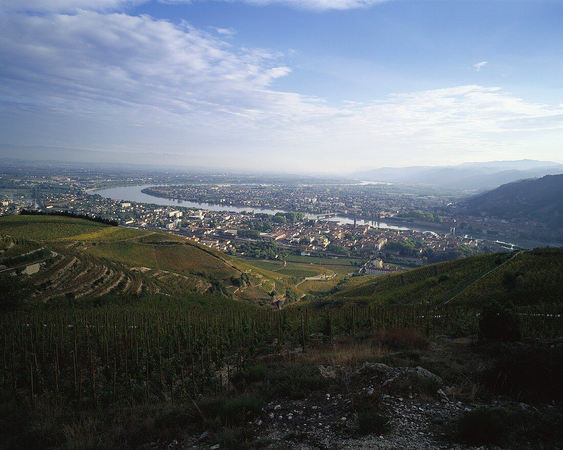 Tain-l'Hermitage, Rhone Valley, France