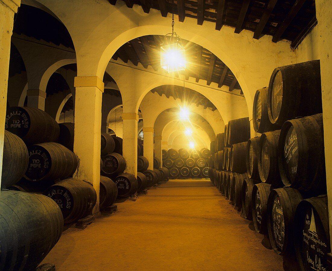 Barrels in store, Gonzalez Byass, Jerez de la Frontera, Spain