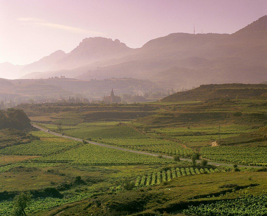 Blick auf Abalos, Rioja Alta, Rioja, Spanien