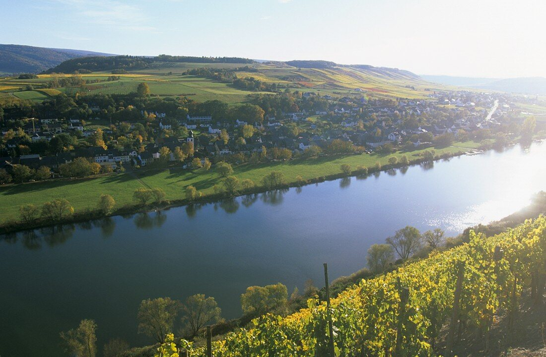 Brauneberg an der Mosel, Rhineland-Palatinate, Germany
