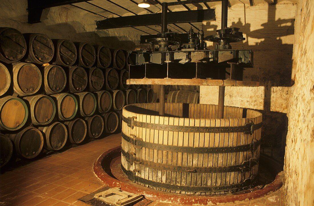 Wine cellar, Bodegas Marqués de Murrieta, Logrono, Rioja, Spain