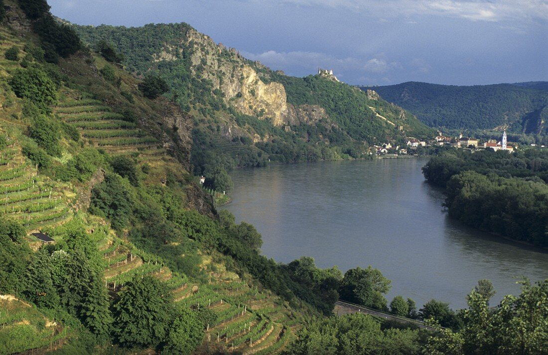 View of the Danube and Dürnstein, Wachau, Austria