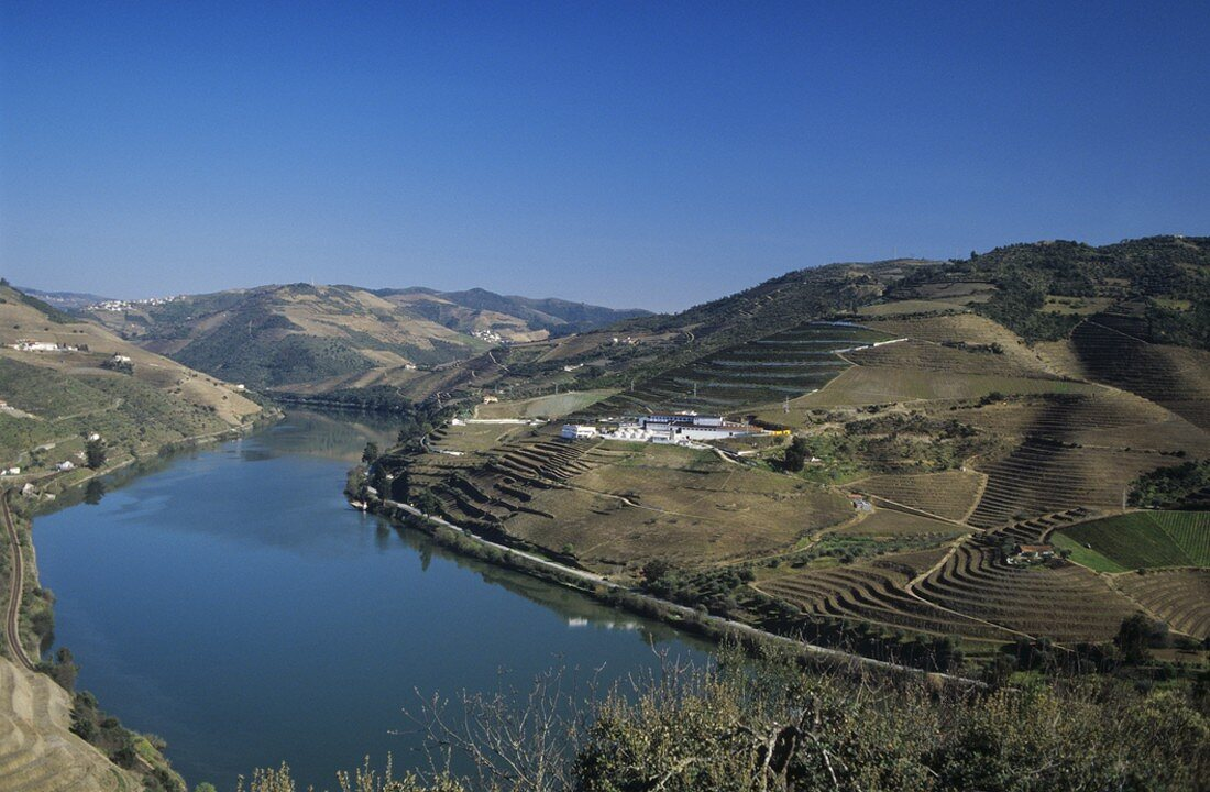 View of Quinta do Noval across the Douro, Pinhao, Portugal