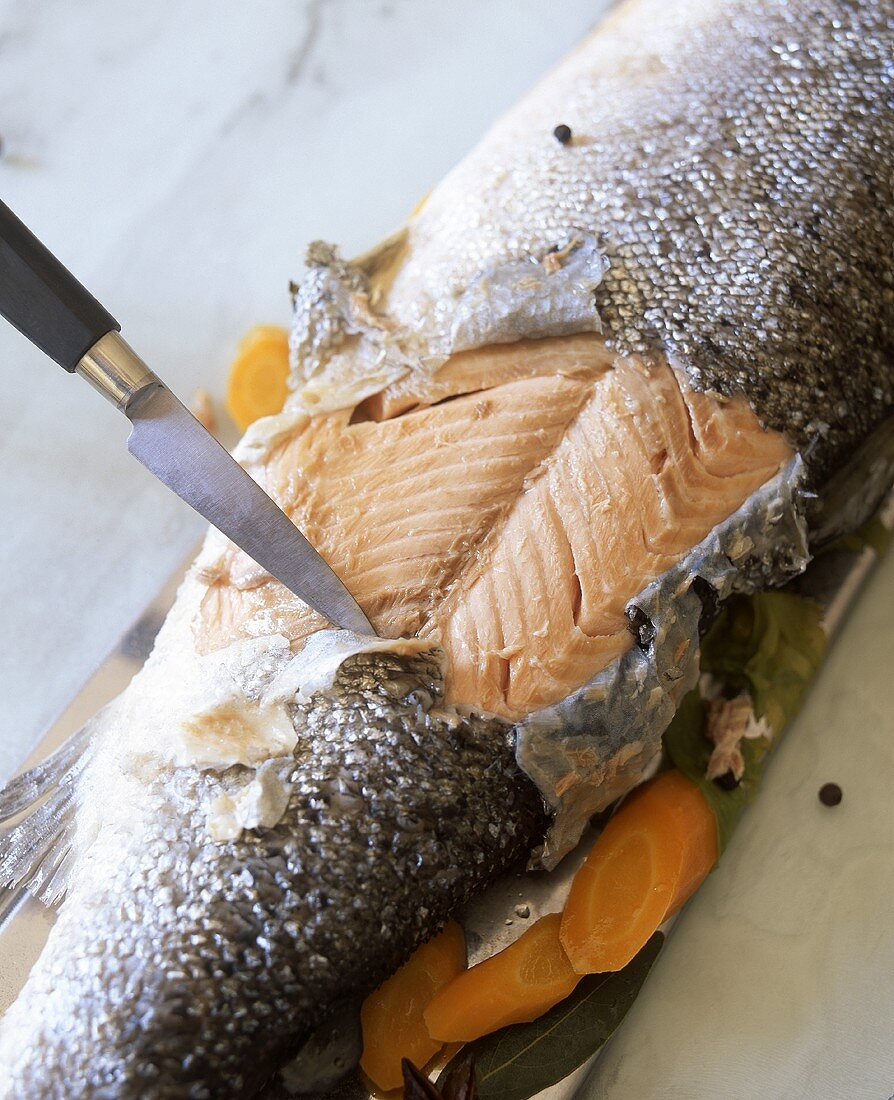 Salmon being skined
