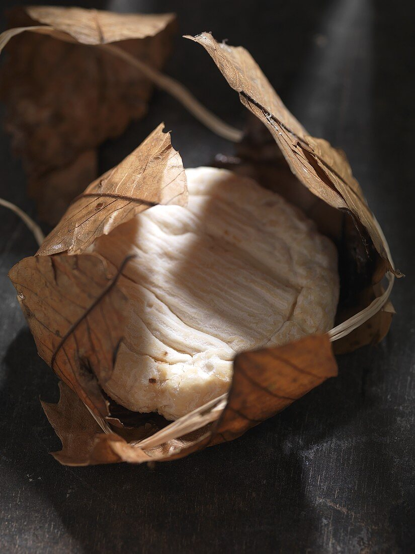 Banon (soft cheese made of goat's cheese in chestnut leaves, France)