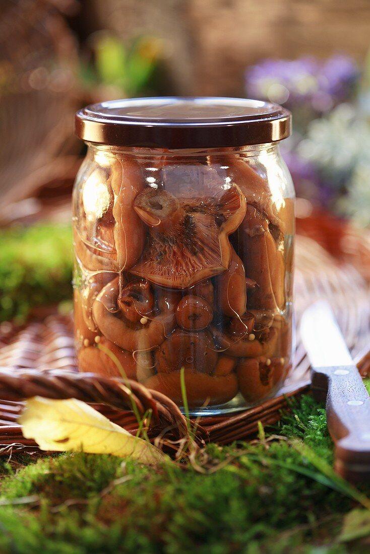 Bottled tawny milkcaps (pasteurised)