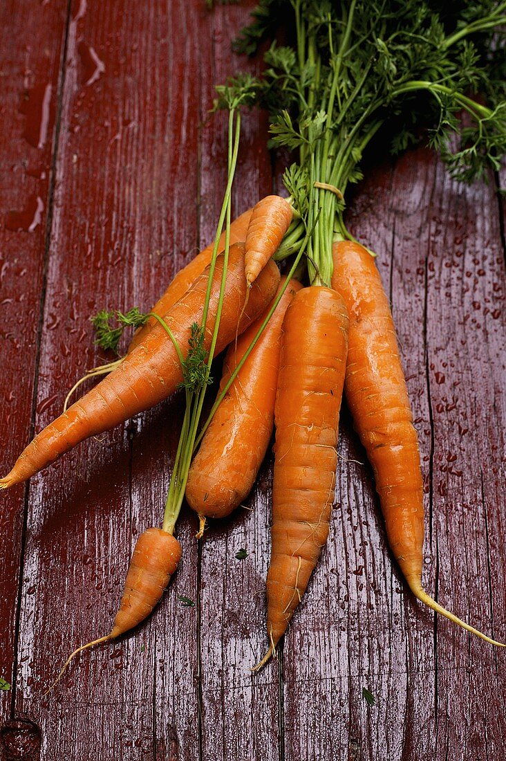 Carrots on painted wooden background