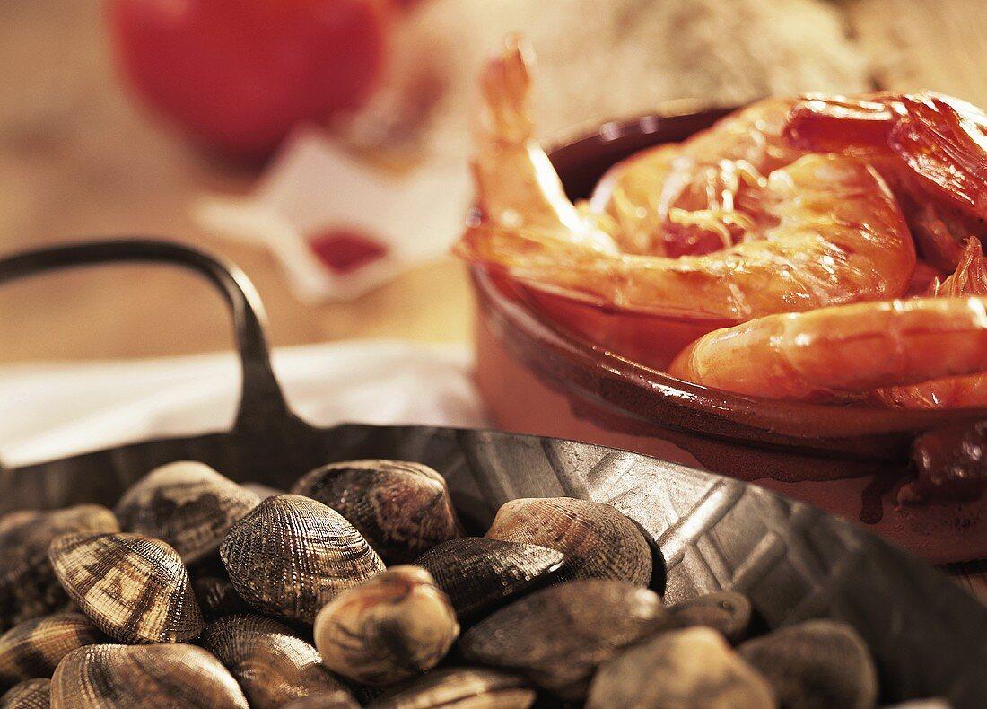 Healthy seafood: shellfish and shrimps