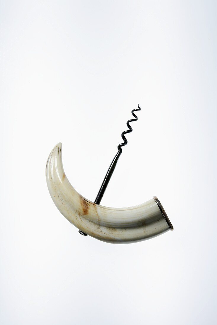 Corkscrew (handle in shape of an animal's canine tooth)