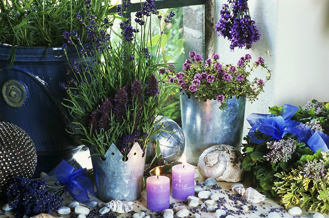 Window decoration of lavender and herbs