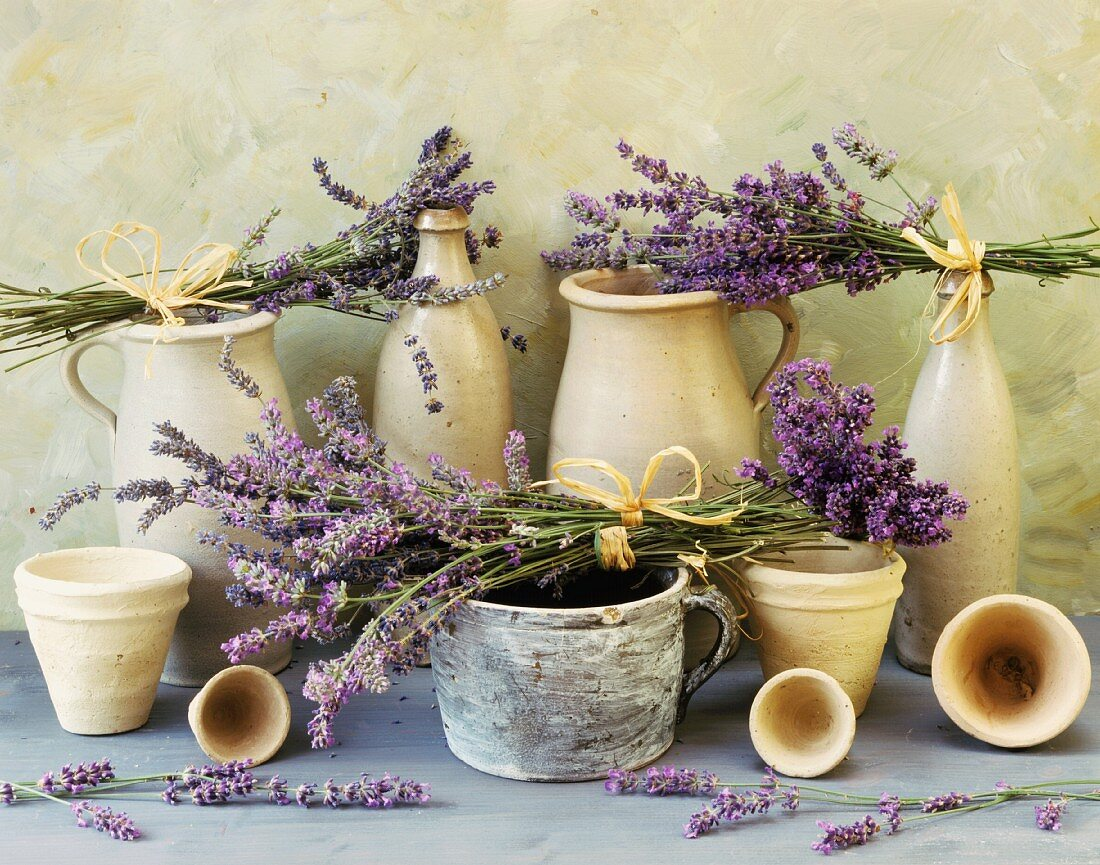 Lavender among terracotta pots and bottles