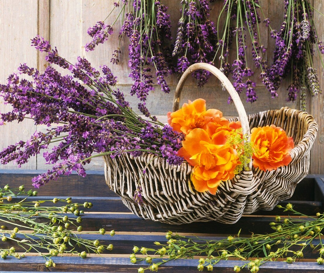 Lavender in basket with roses
