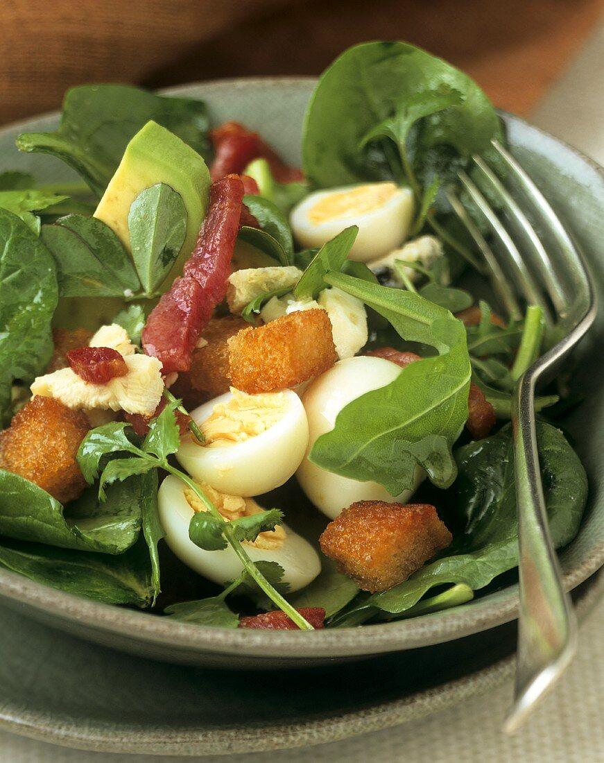 Lukewarm salad: avocado, eggs, Roquefort, bacon and Argan oil