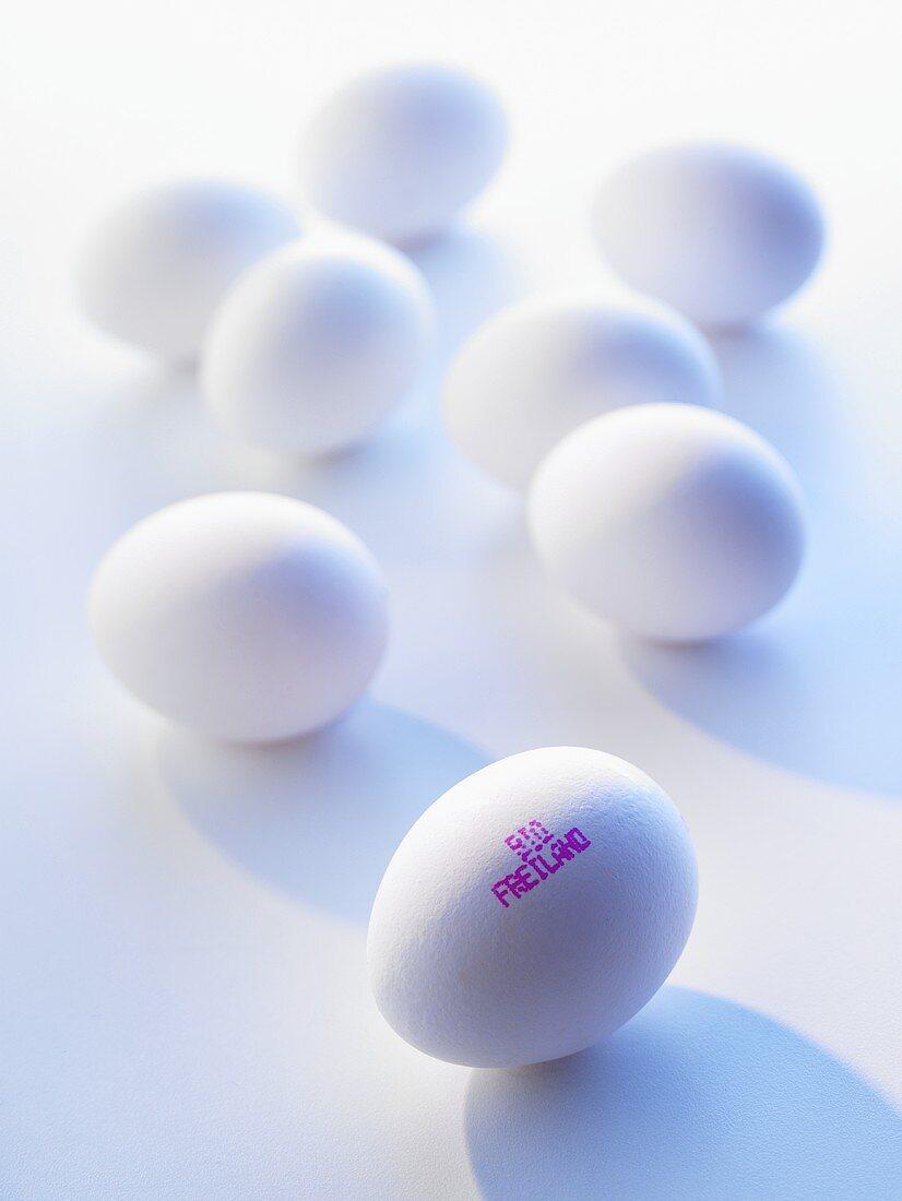 White organic free-range eggs with stamp showing origin