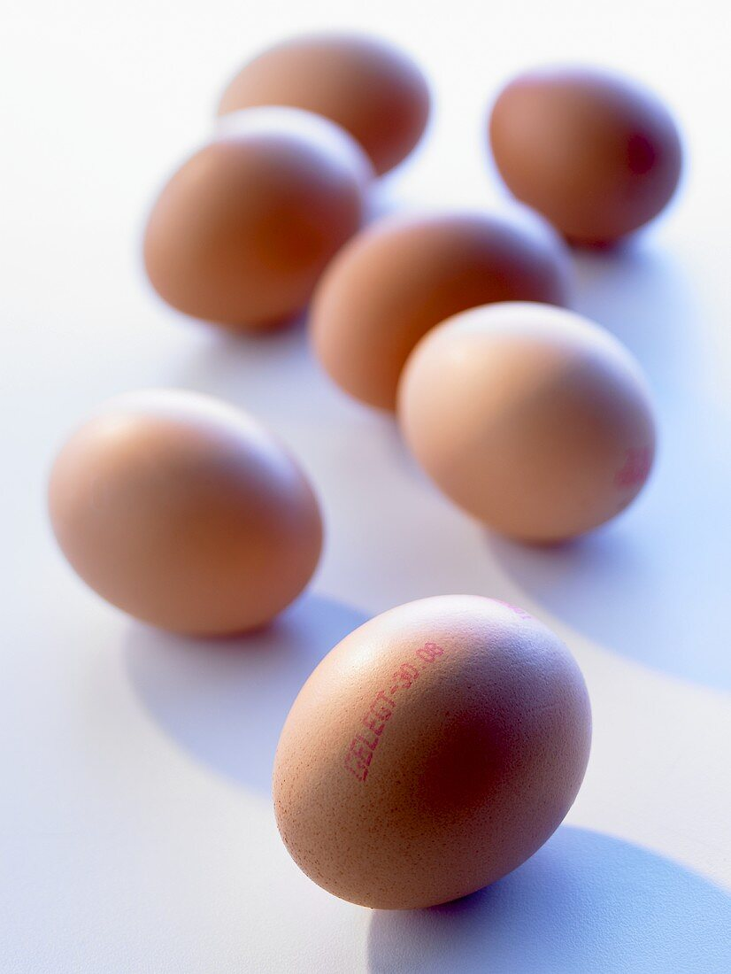 Brown eggs with stamp showing laying date