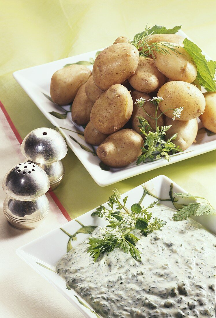Potatoes cooked in their skins with green sauce