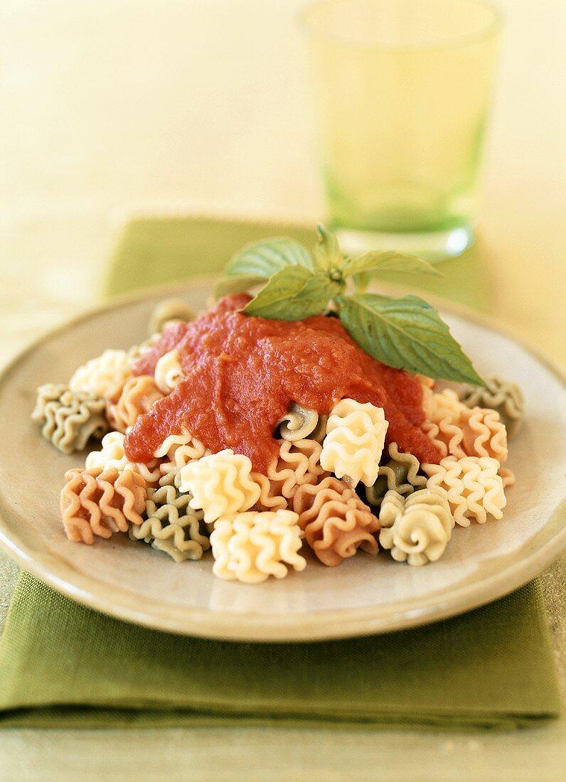 Radiatori with tomato sauce and basil
