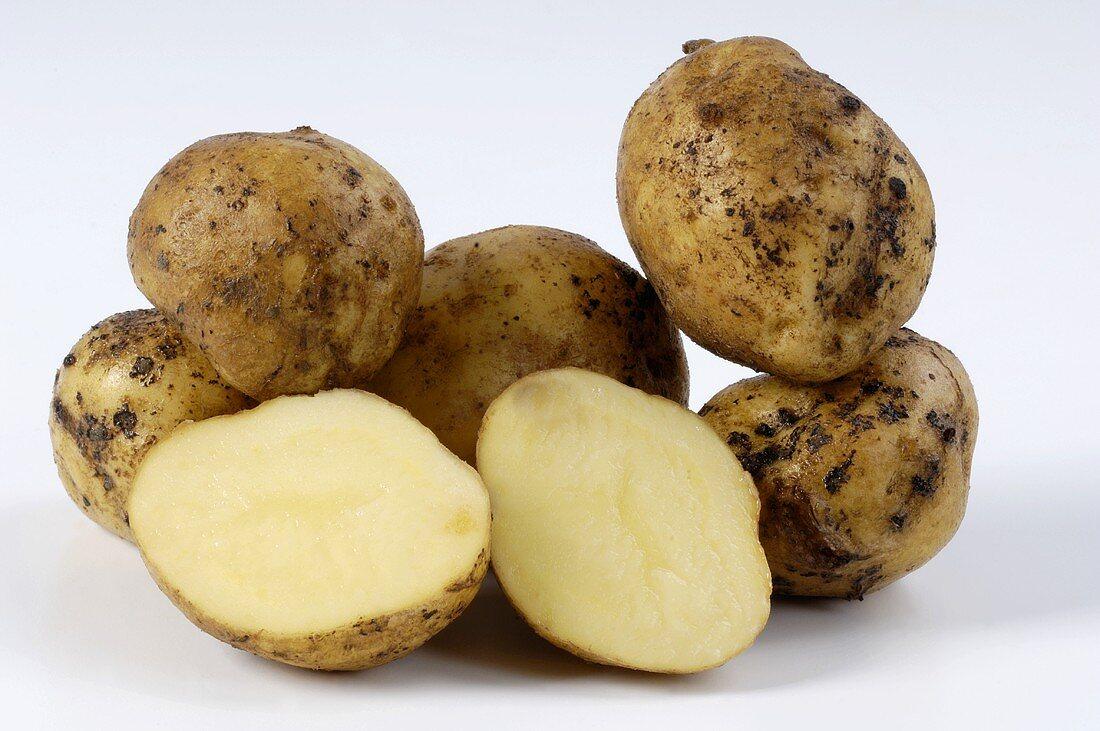 Mehrere Kartoffeln der Sorte 'Ackersegen' ganz und halb