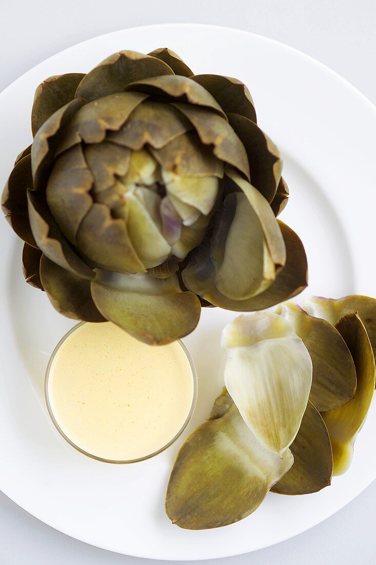 Cooked artichoke with hollandaise sauce