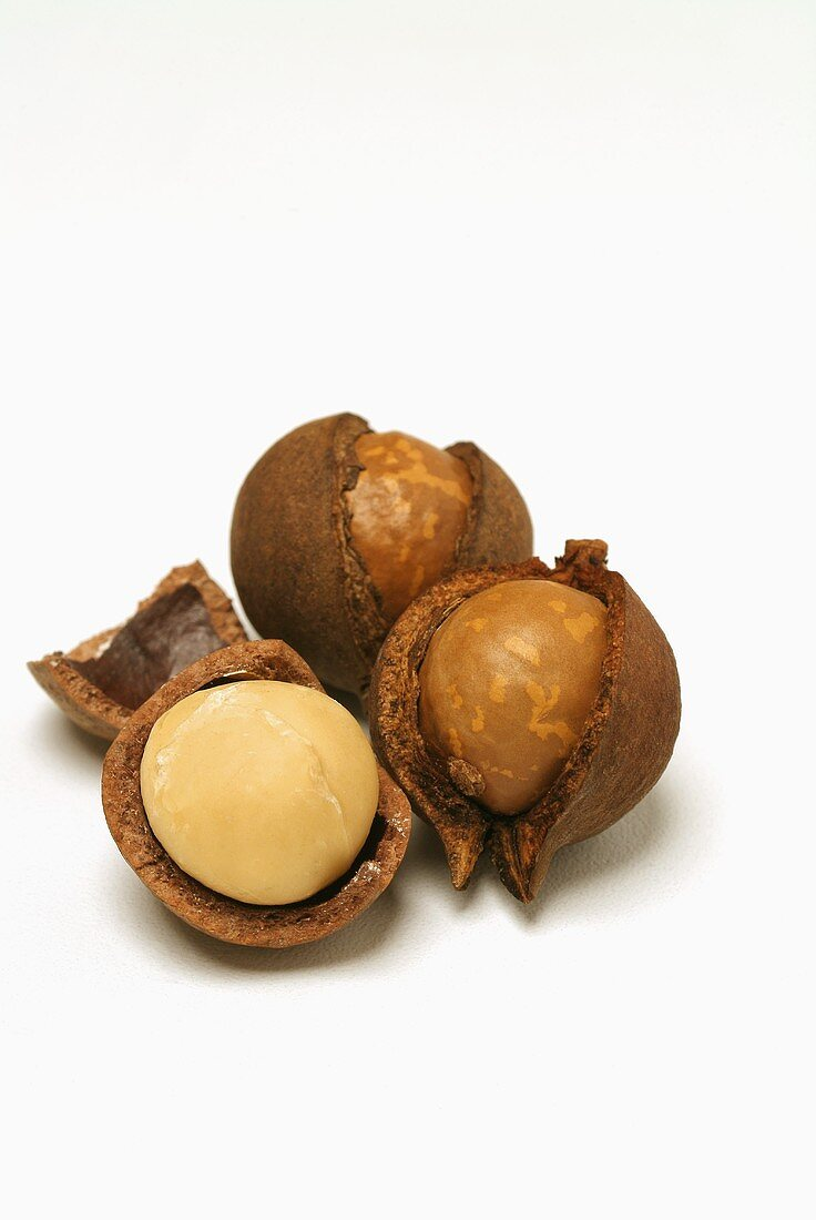 Three macadamia nuts