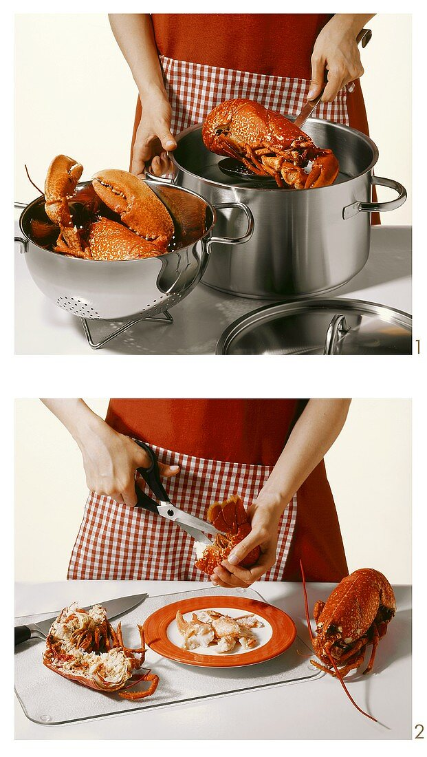 Cooking and cutting up a lobster