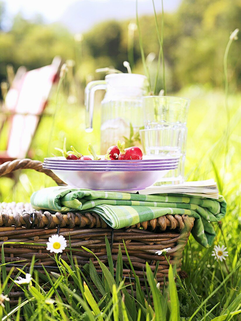 Picnic basket with picnicware and radishes