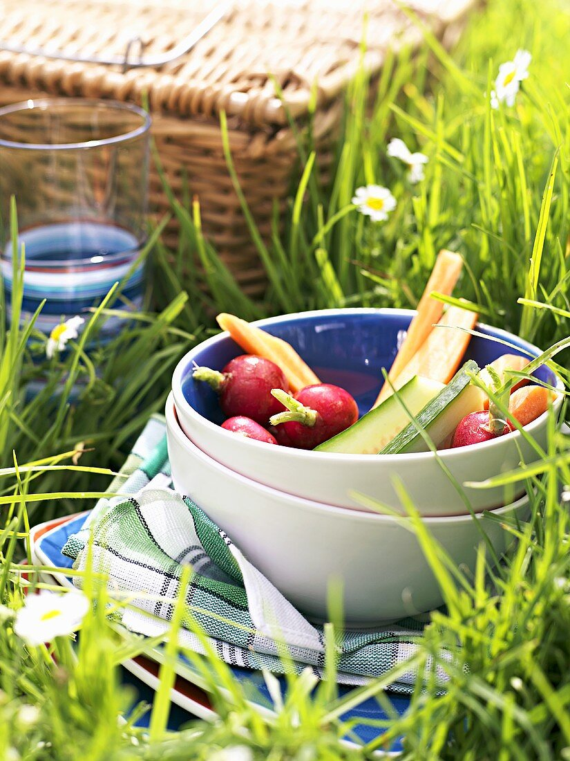 Raw vegetables for a picnic
