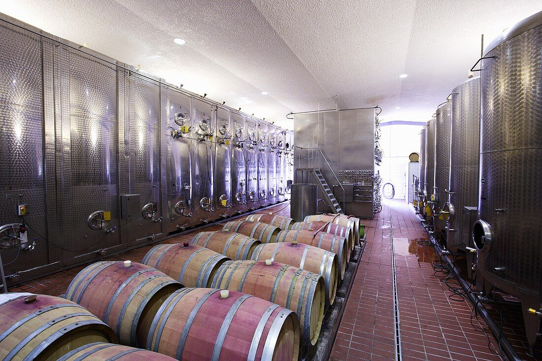 Stainless steel tanks and wooden barrels at a winery