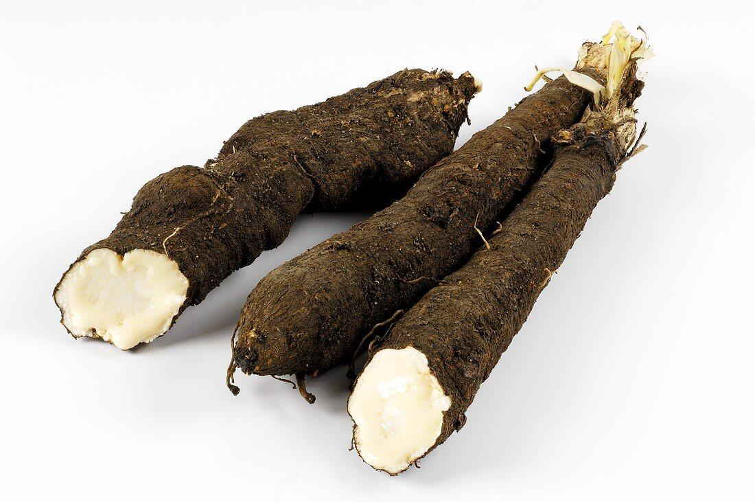 Three scorzonera roots
