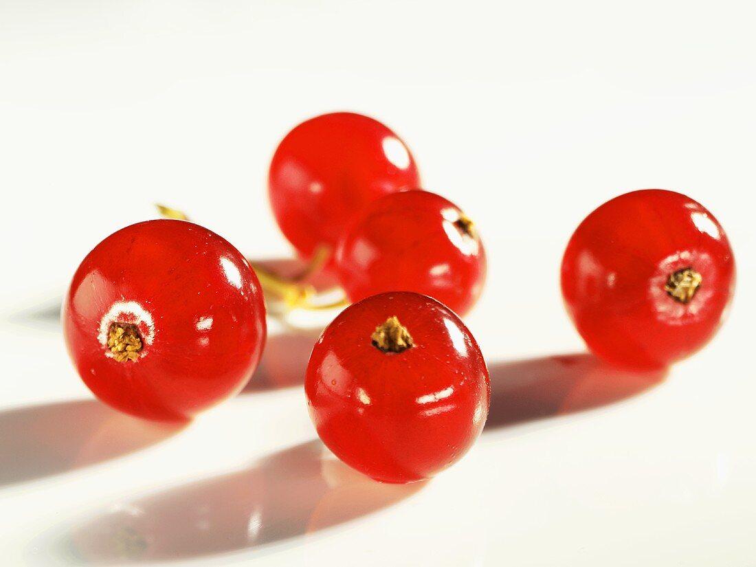 Five fresh redcurrants