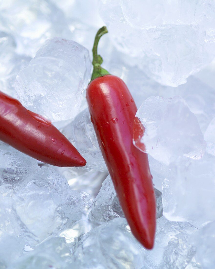 Two red chillies on ice