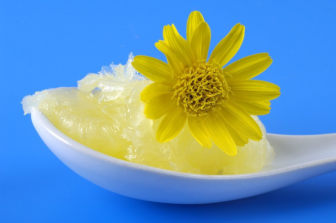 Home-made Arnica ointment with flower on a spoon