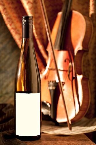 Bottle of White Wine; Violin