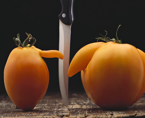 Two tomatoes with noses, knife between them