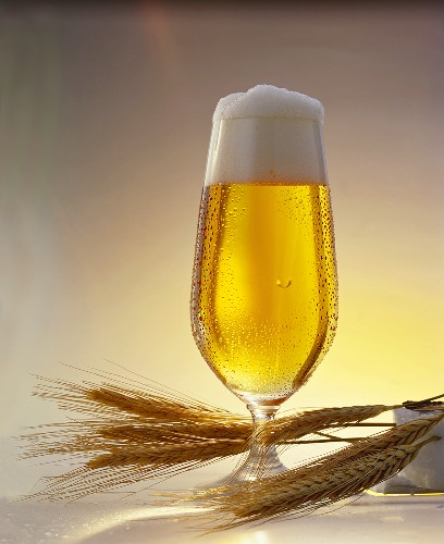A glass of Pils and cereal ears