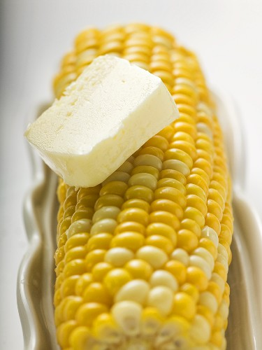 Corn on the cob with knob of butter